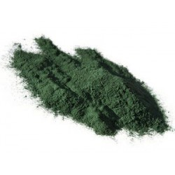 Spiruline